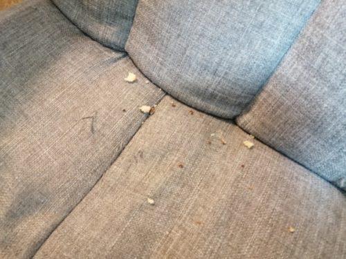 椅子にこぼれたチョコパイ